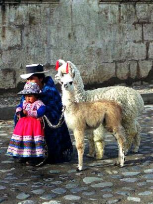 Mom and girl with alpaca and llama